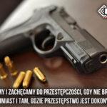 Poważnym przestępstwom przeciwko mieniu towarzyszy nielegalna broń – dowód tej tezy z Polski