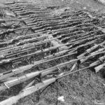 Karabin przeciwpancerny wzór 35