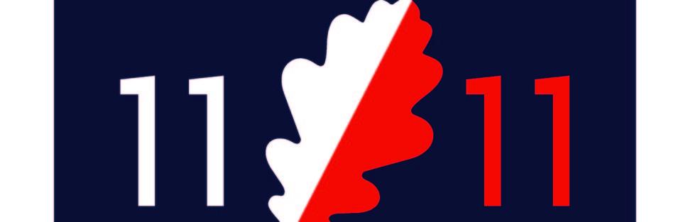 Ruch 11 Listopada, którego jednym z celów jest gwarantowanie Polakom prawa do posiadania i noszenia broni, został zgłoszony do ewidencji partii politycznych