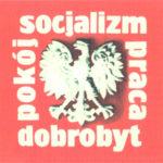 Domy Polaków w Irlandii nie są ich twierdzą, a socjalistyczna Polska nie chce być ich domem