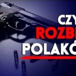 Czy PiS rozbroi Polaków?