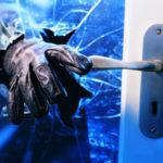 Z cyklu broń ratuje życie: włamywacz z bronią w ręku wchodził przez okno do domu, napotkał uzbrojonego domownika…