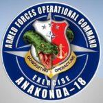 Ruszają ćwiczenia Anakonda 18, będą tam też członkowie organizacji proobronnych z atrapami broni