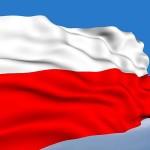 Nie mamy w Polsce wspólnej idei.