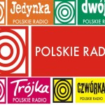 Czy w Polsce broń powinna być szerzej dostępna?