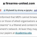W Parlamencie Europejskim blokada stron internetowych dotyczących broni palnej.