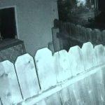 Z cyklu broń ratuje życie: mieszkaniec Brentwood (USA) strzelał do włamywaczy