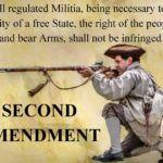 Druga Poprawka do amerykańskiej konstytucji – nurty interpretacyjne