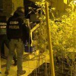 Przestępcy narkotykowi posiadają nielegalnie broń, niestraszne im administracyjne zakazy