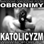 Broń palna w rękach obywateli to symbol wolności – tego nie pojmuje organizacja Narodowe Odrodzenie Polski (NOP)