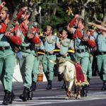 Narkotykowi mafiozi posiadają nielegalną broń, zaopatrują się w broń i amunicję w wojsku – przykład z Hiszpanii