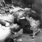 Tam gdzie bezbronni ludzie, tam za wojenne zbrodnie na cywilach sprawcy nie ponoszą odpowiedzialności