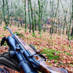 W okolicach Kołobrzegu śmiertelny wypadek na polowaniu dewizowym