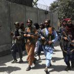 Co łączy prezydenta USA i talibów? Oni są jednomyślni w sprawie  broni – uważają, że cywile nie powinni jej mieć